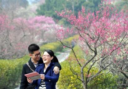 Estos chinos en primavera se están partiendo la caja viendo nuestro vídeo con los miguelitos y escuchando el programa.